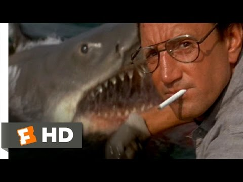 Jaws (1975) - You're Gonna Need a Bigger Boat Scene (4/10) | Movieclips