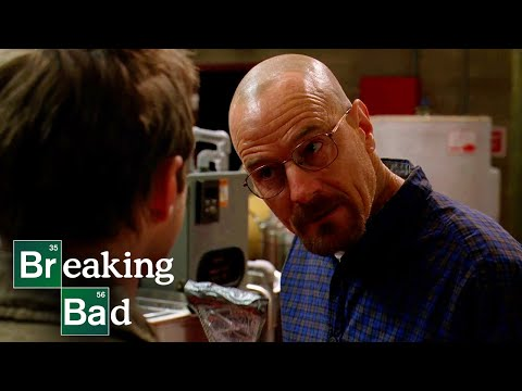 A Fly Contaminates The Lab | Fly | Breaking Bad