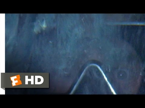 Jaws (1975) - Hooper in the Cage Scene (8/10) | Movieclips
