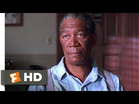 The Shawshank Redemption (1994) - Red's Parole Hearing Scene (9/10) | Movieclips