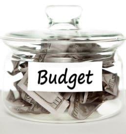 Script Budget Report