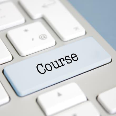 Online blogger: Course