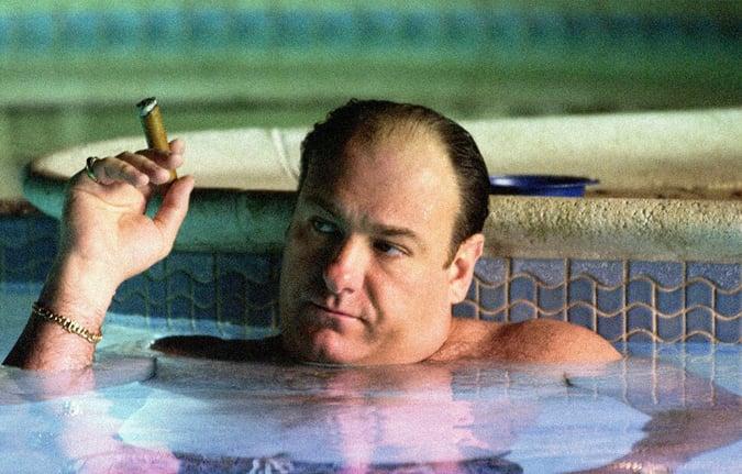 Tony Soprano Character Bio
